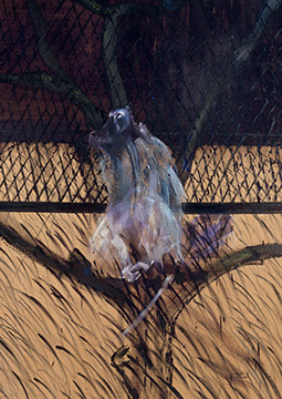 Francis Bacon, Study of a Baboon, 1953
